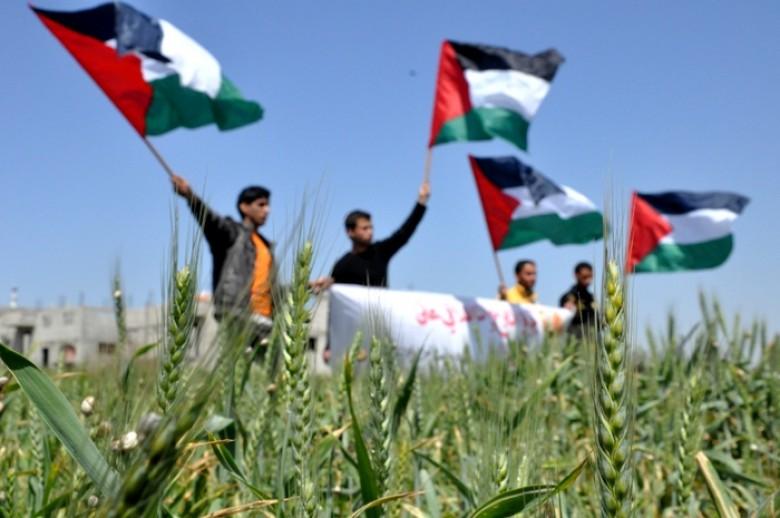 يوم الأرض في فلسطين!
