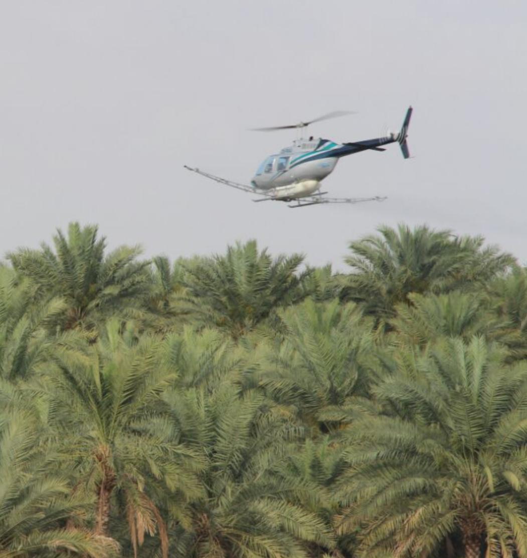 حرب على الدوباس في ولاية منح