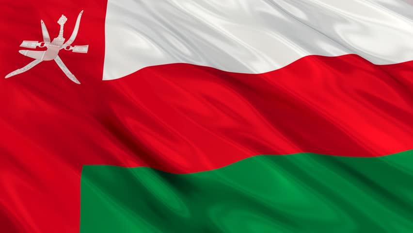 اختيار السلطنة عضوا عن فريق الحكومات في هيئة الرقابة المالية بمنظمة العمل العربية