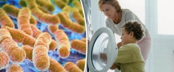 انتبه.. بكتيريا داخل غسالتك قد تصيبك بالفشل الكُلوي