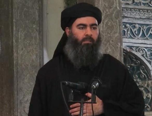 قادة التنظيمات الإرهابية درسوا العلوم أكثر من الشريعة
