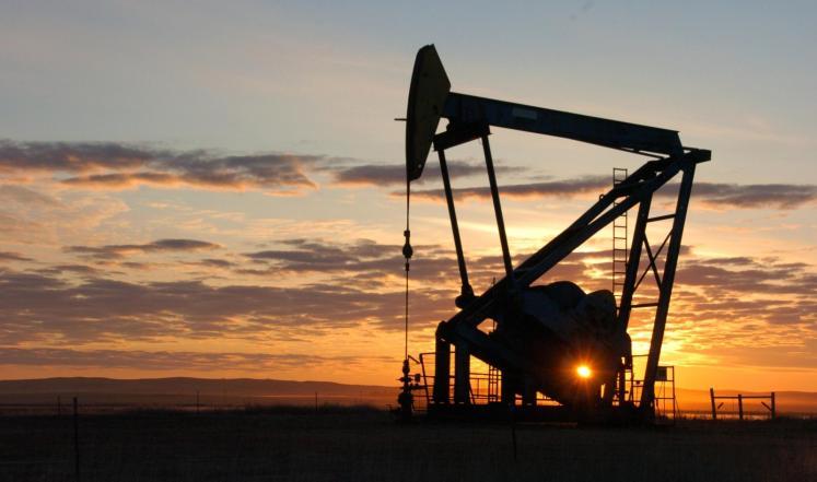 النفط يرتفع باتجاه 50 دولارًا