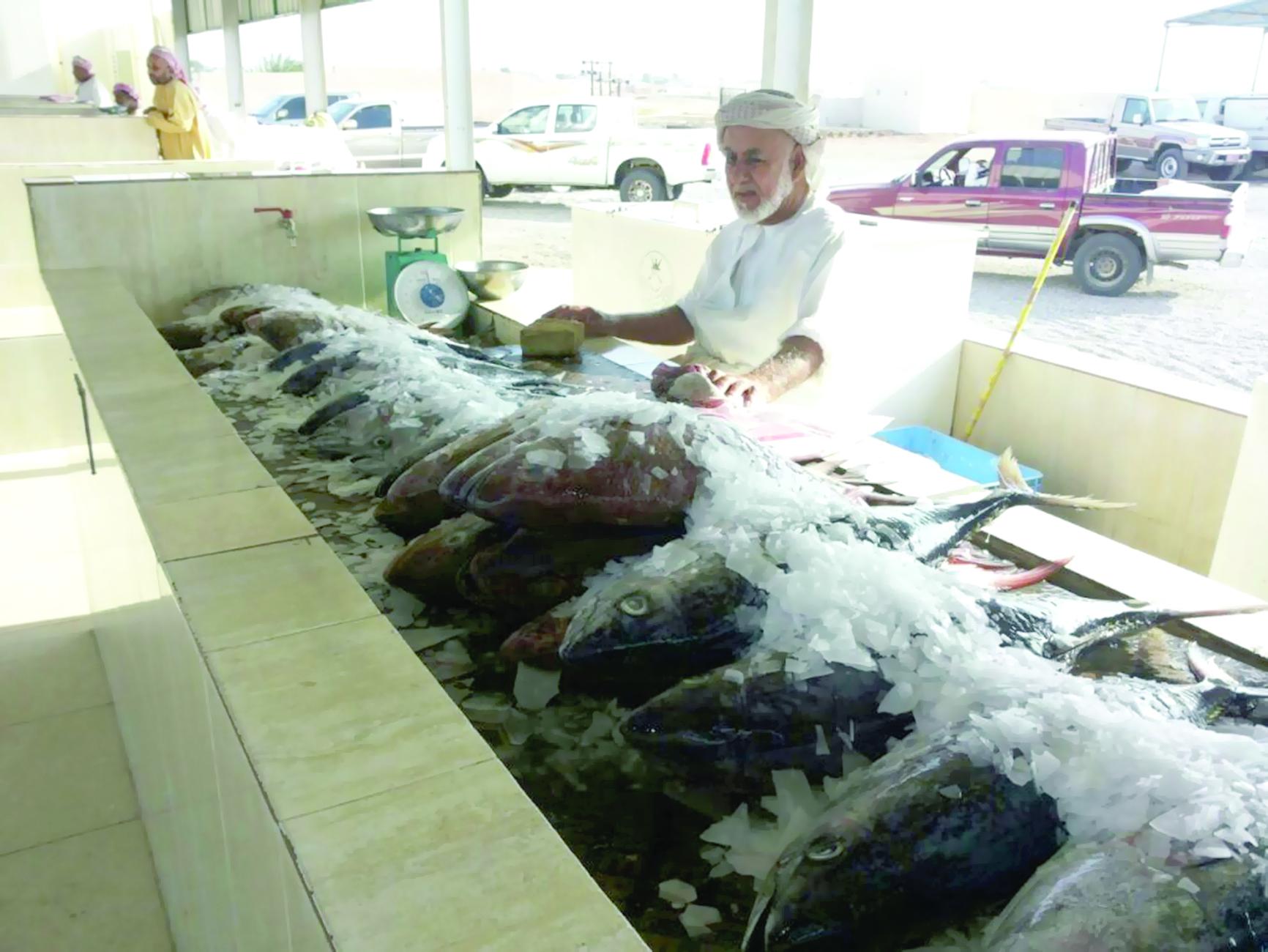 جهود لتوفير الاسماك في الاسواق المحلية خلال الصيف