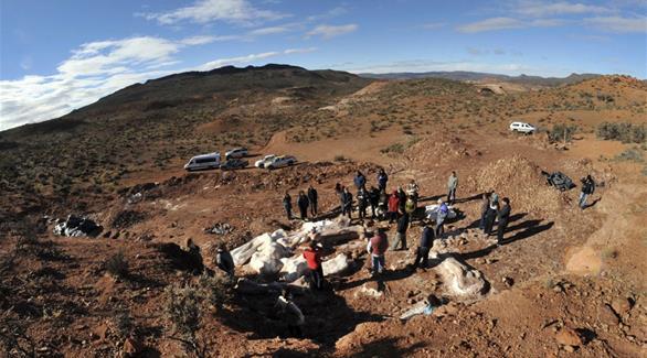علماء يكتشفون حفرية جديدة لديناصور في الأرجنتين