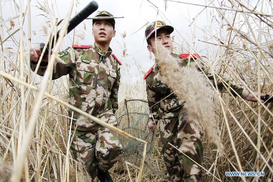 7ر1 مليون دولار من الصين لمكافحة الصيد غير المشروع ببتسوانا