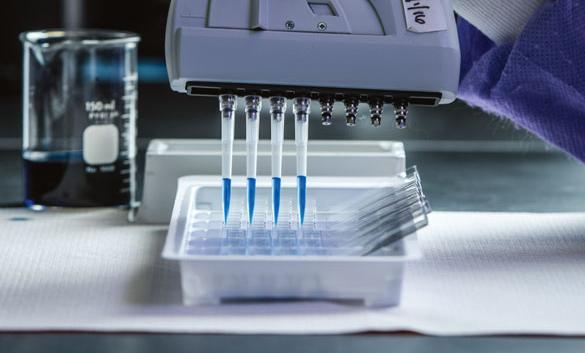 رقائق إلكترونية بديلة  عن الحيوانات في اختبارات الأدوية
