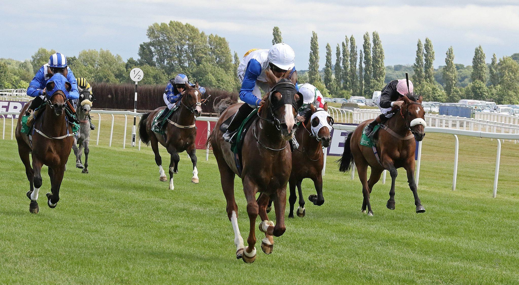 Oman Royal Cavalry's Kowkat wins at newbury