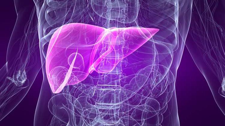 اكتشاف فيروسات التهاب الكبد في وقت مبكر مهم من أجل العلاج