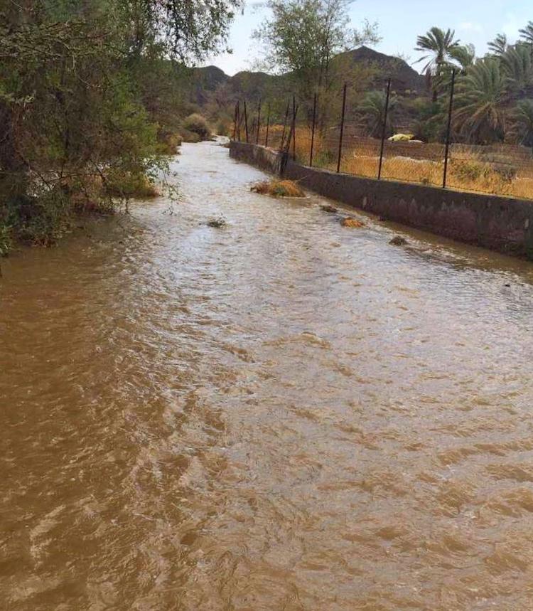 أمطارا تراوحت بين الخفيفة والمتوسطة والغزيرة على ولاية محضة