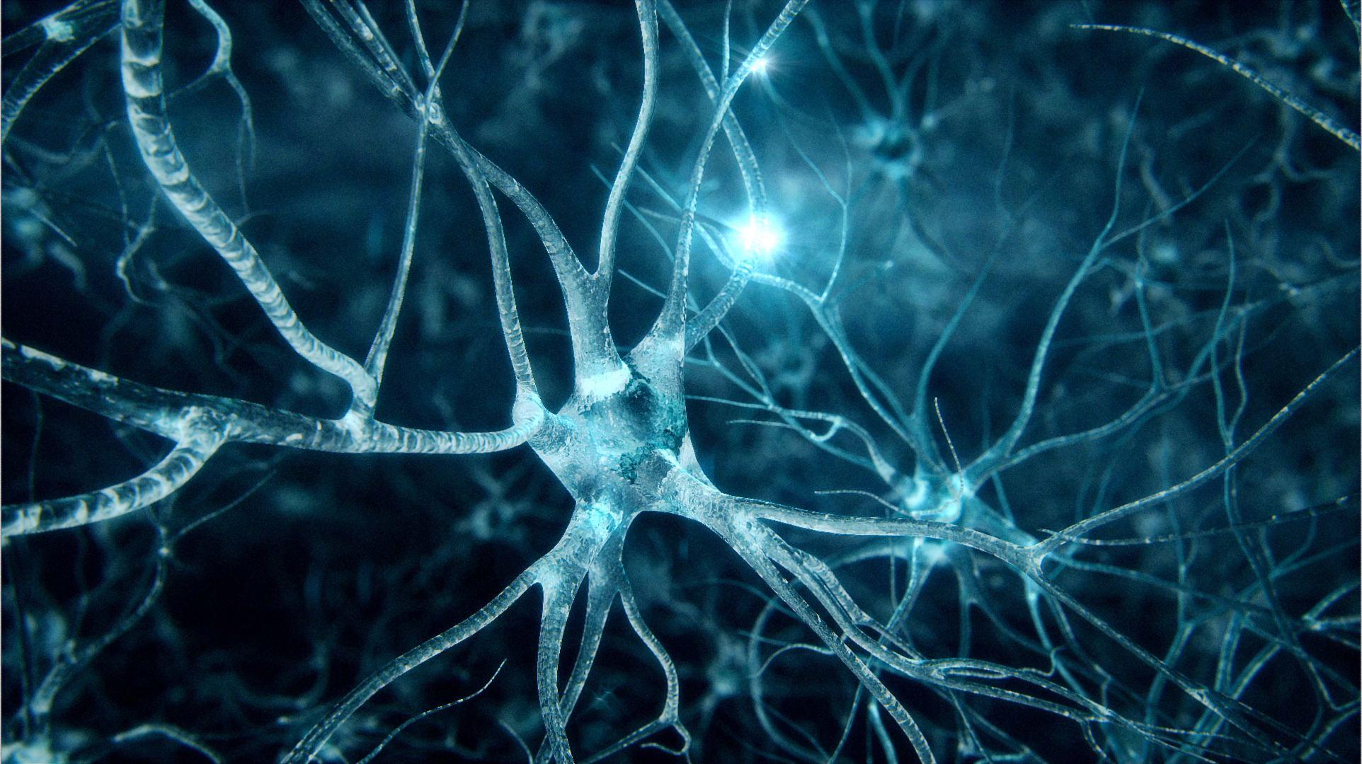 دراسة: البروتين الذي يسبب مرض الزهايمر يغير هيئته قبل دخول خلايا المخ