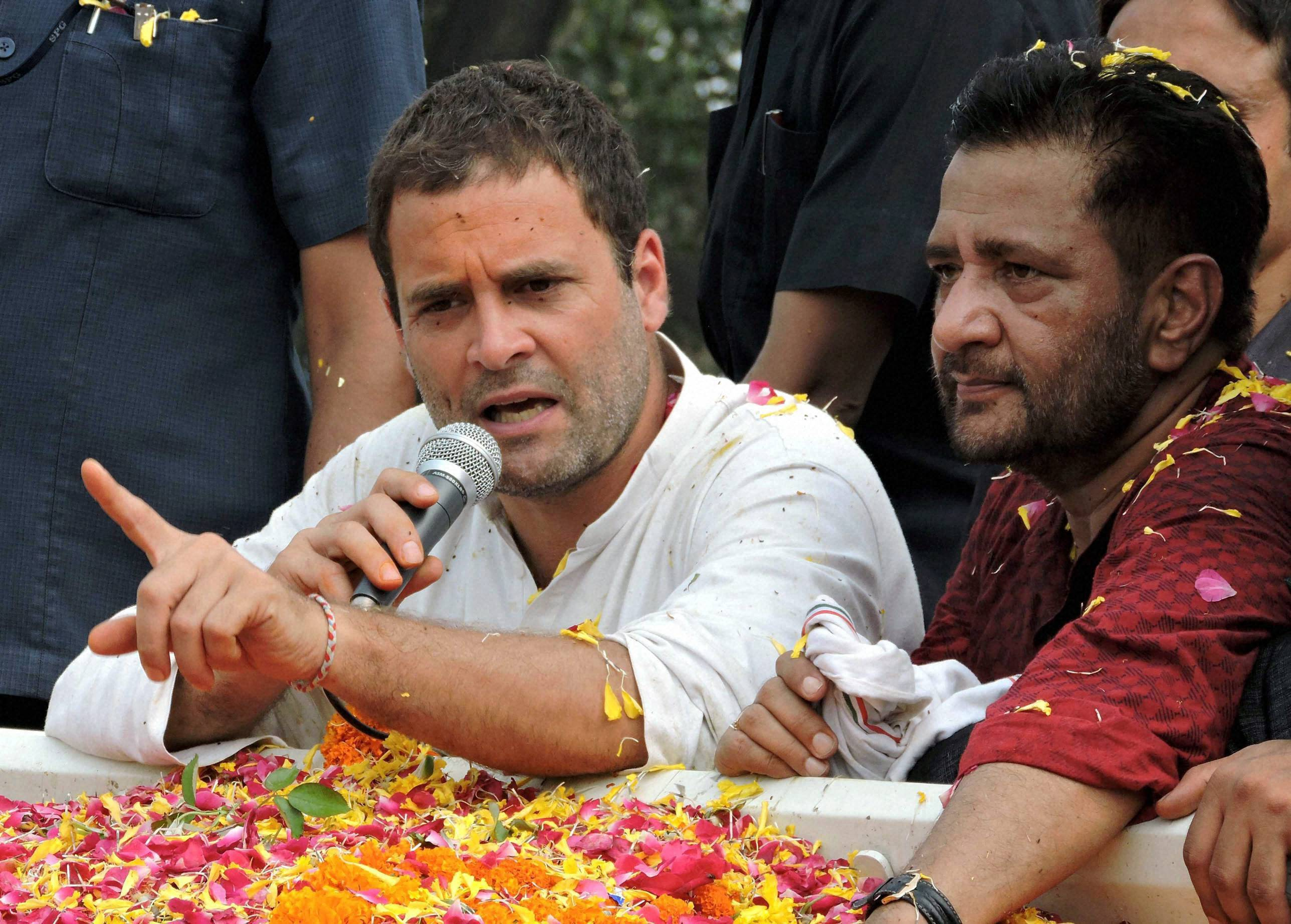 BJP, RSS 'doing politics' over cow protection: Rahul