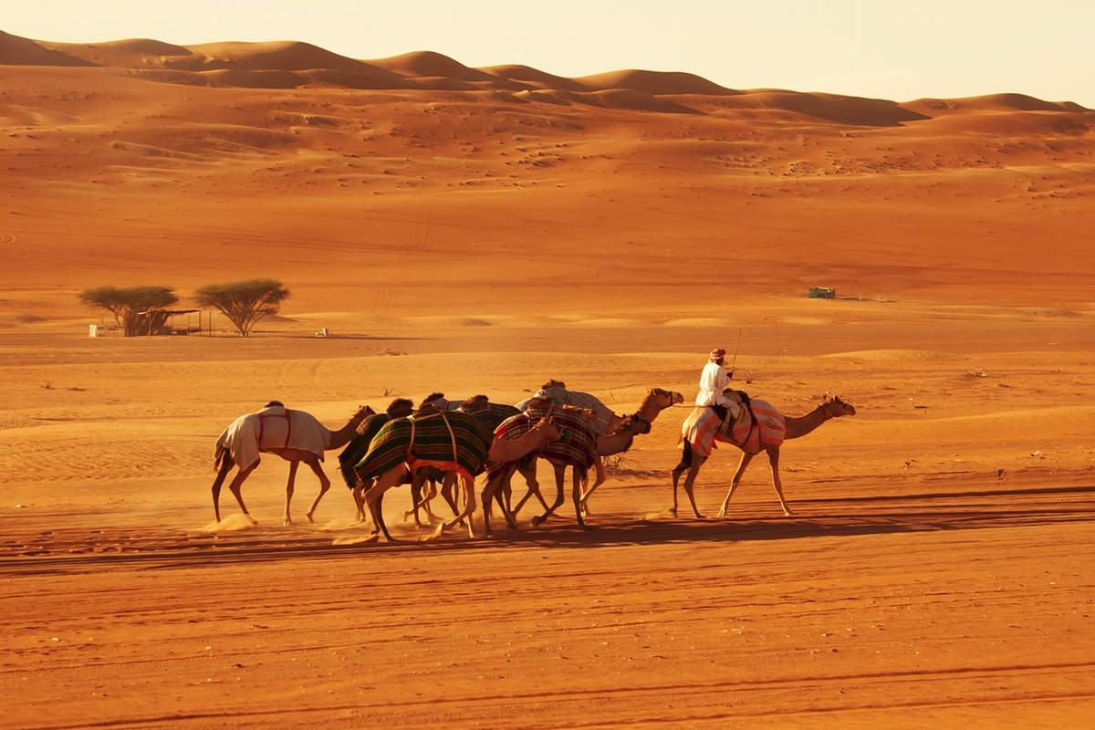 10 صور تشرح لماذا عمان جنة سياحية
