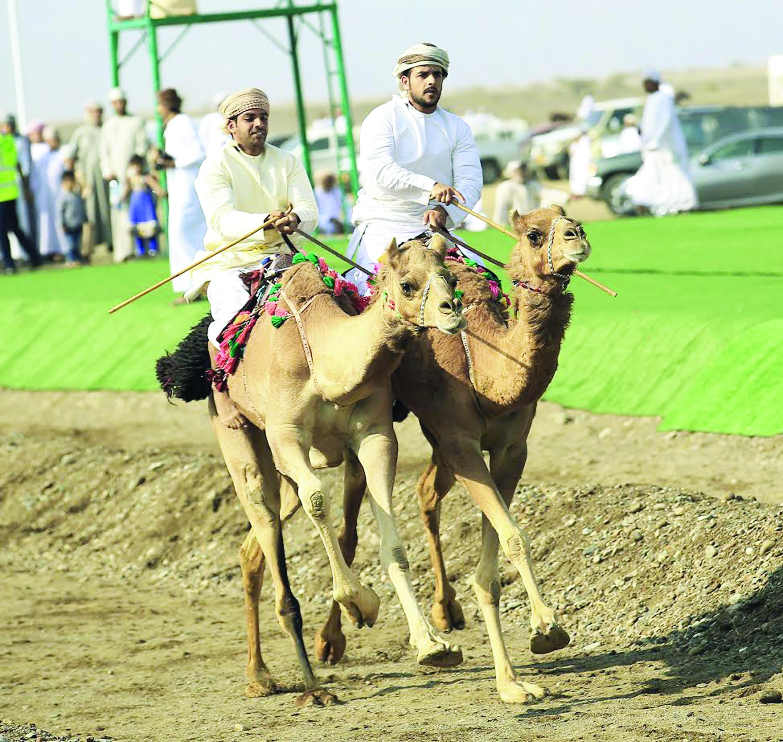 ولاية صحم تتوَج بلقب الشداد الذهبي في مهرجان النعيمي للإبل