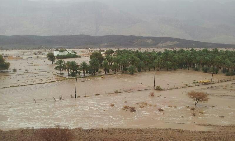 أمطار الخير تهطل على محافظات السلطنة