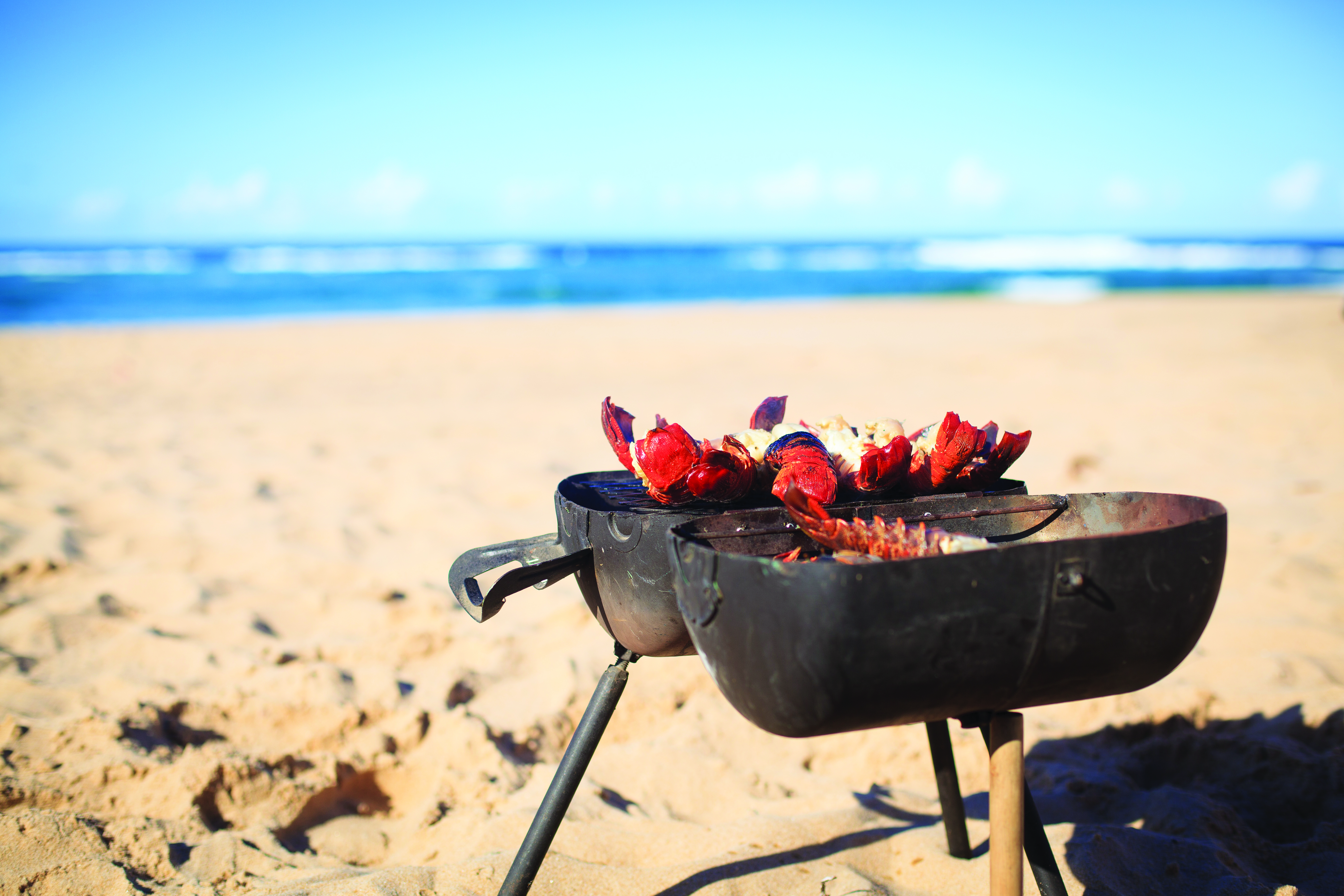 How to plan a perfect beach barbecue