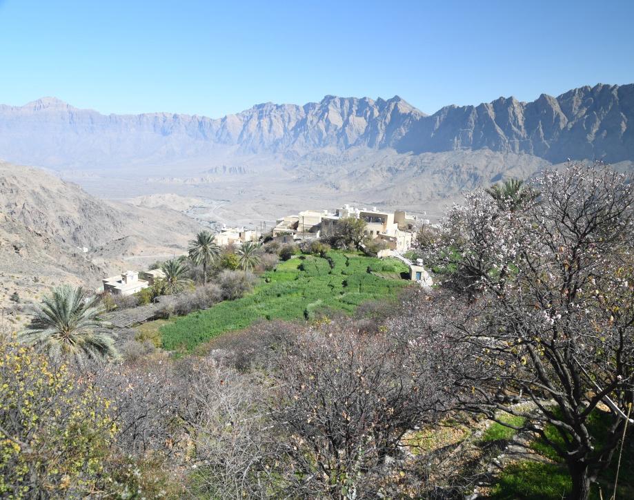 الدفاع المدني: بلاغ عن سقوط شخص من أعلى جبل في ولاية نخل