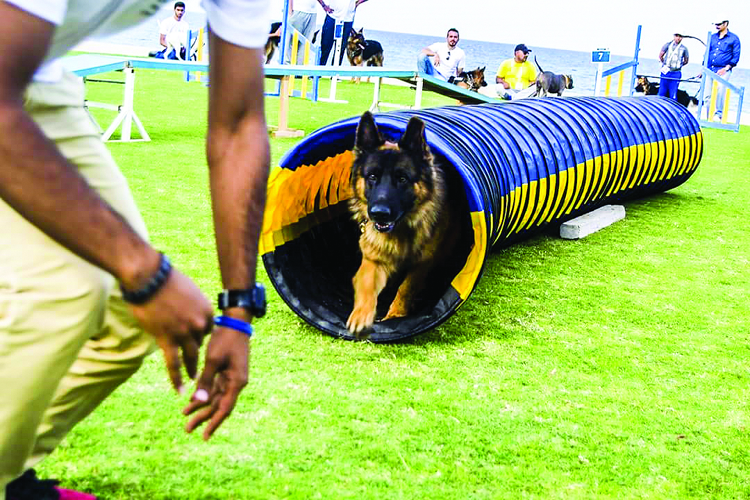 'Canines for a Cause' donates fund to needy in Oman
