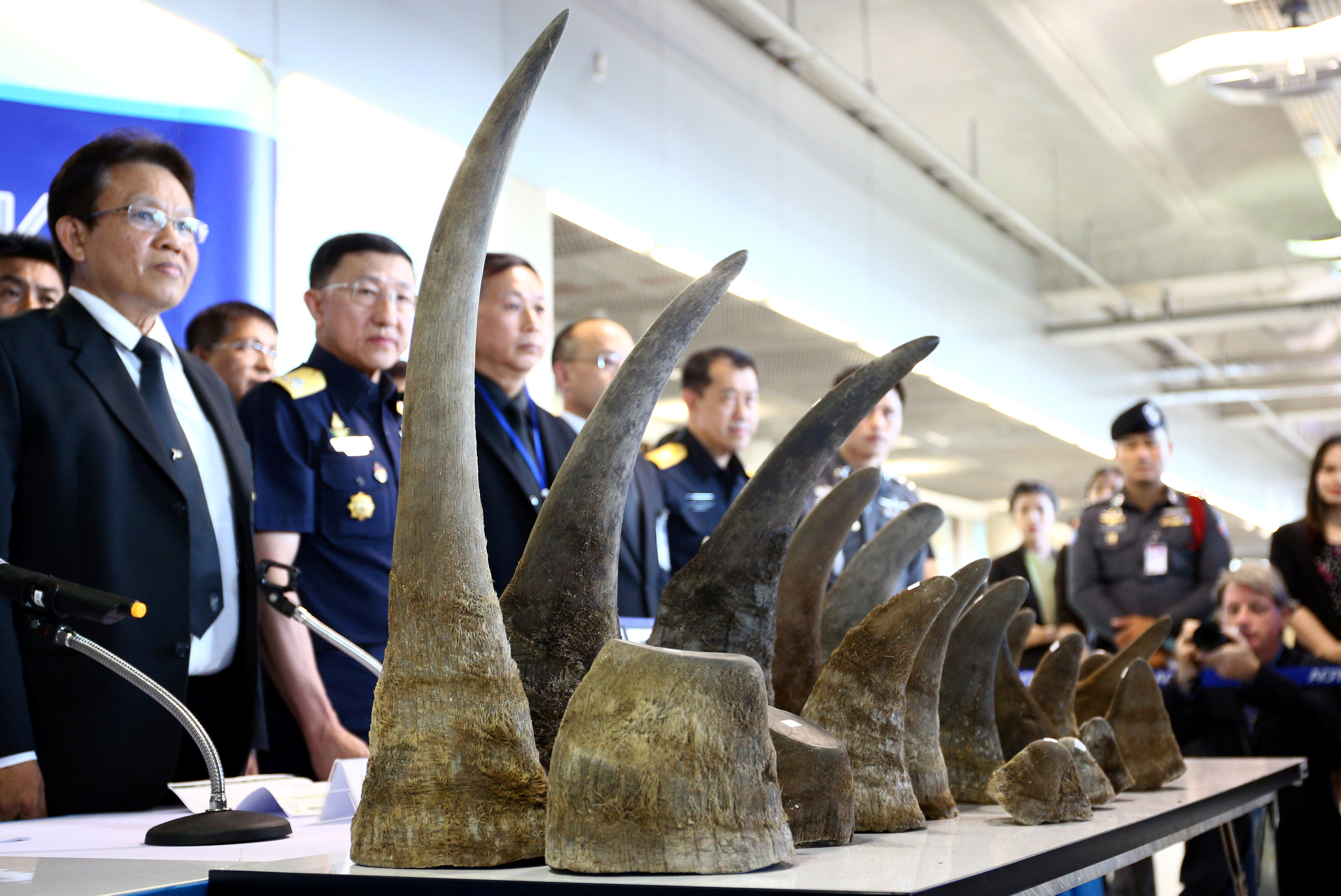 Thailand seizes rhino horns worth $5 million