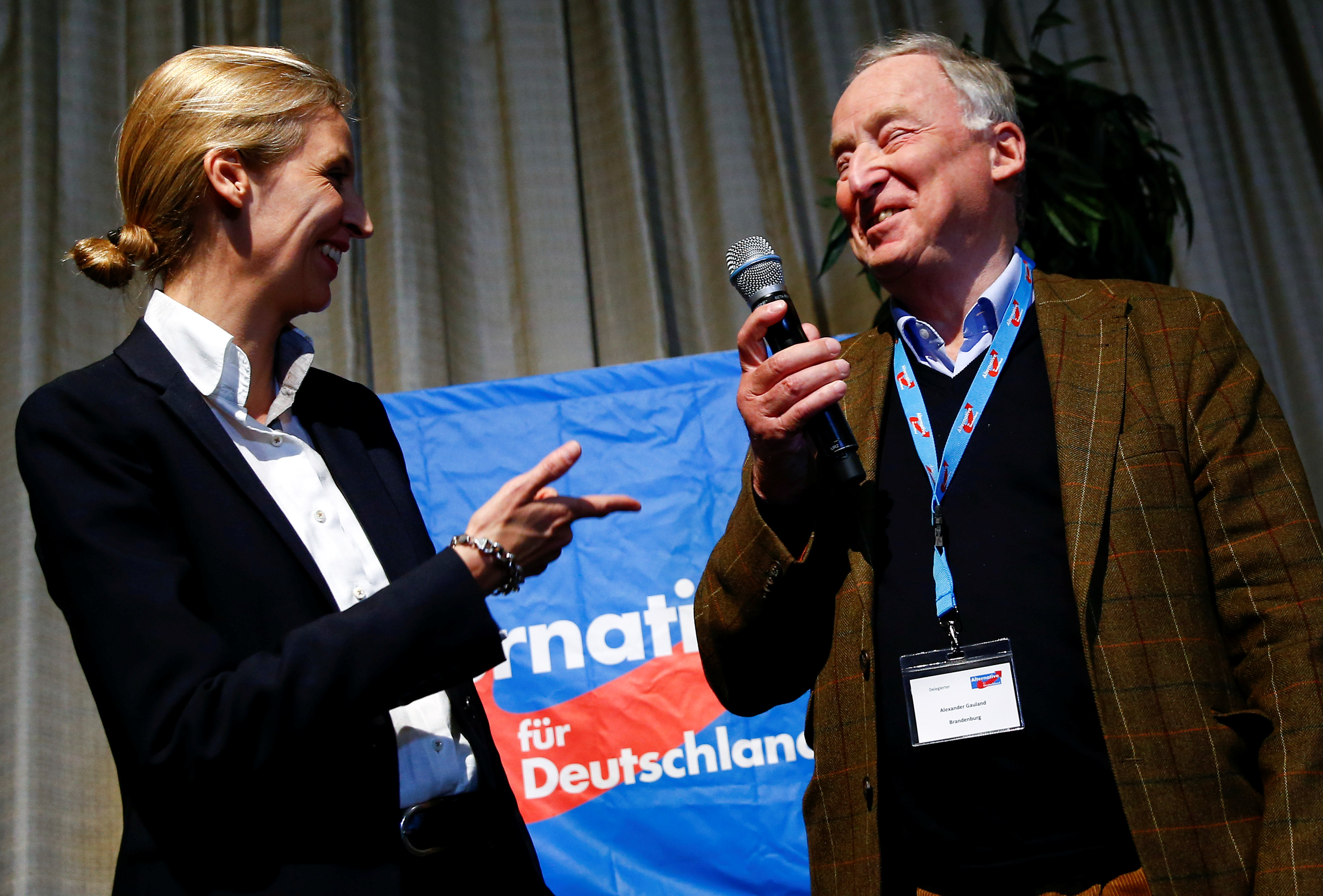 Germany's AfD picks leaders for election drive, seen shifting right