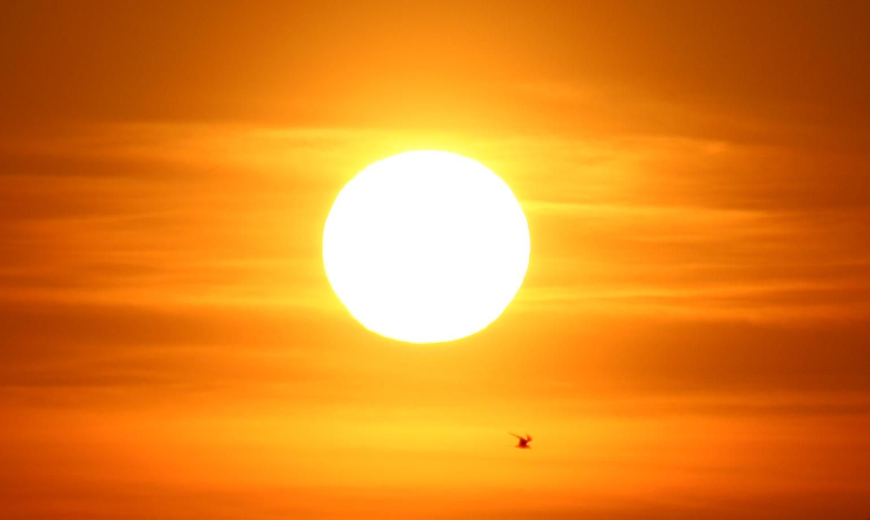 درجات الحرارة تصل إلى 39 في العاصمة مسقط
