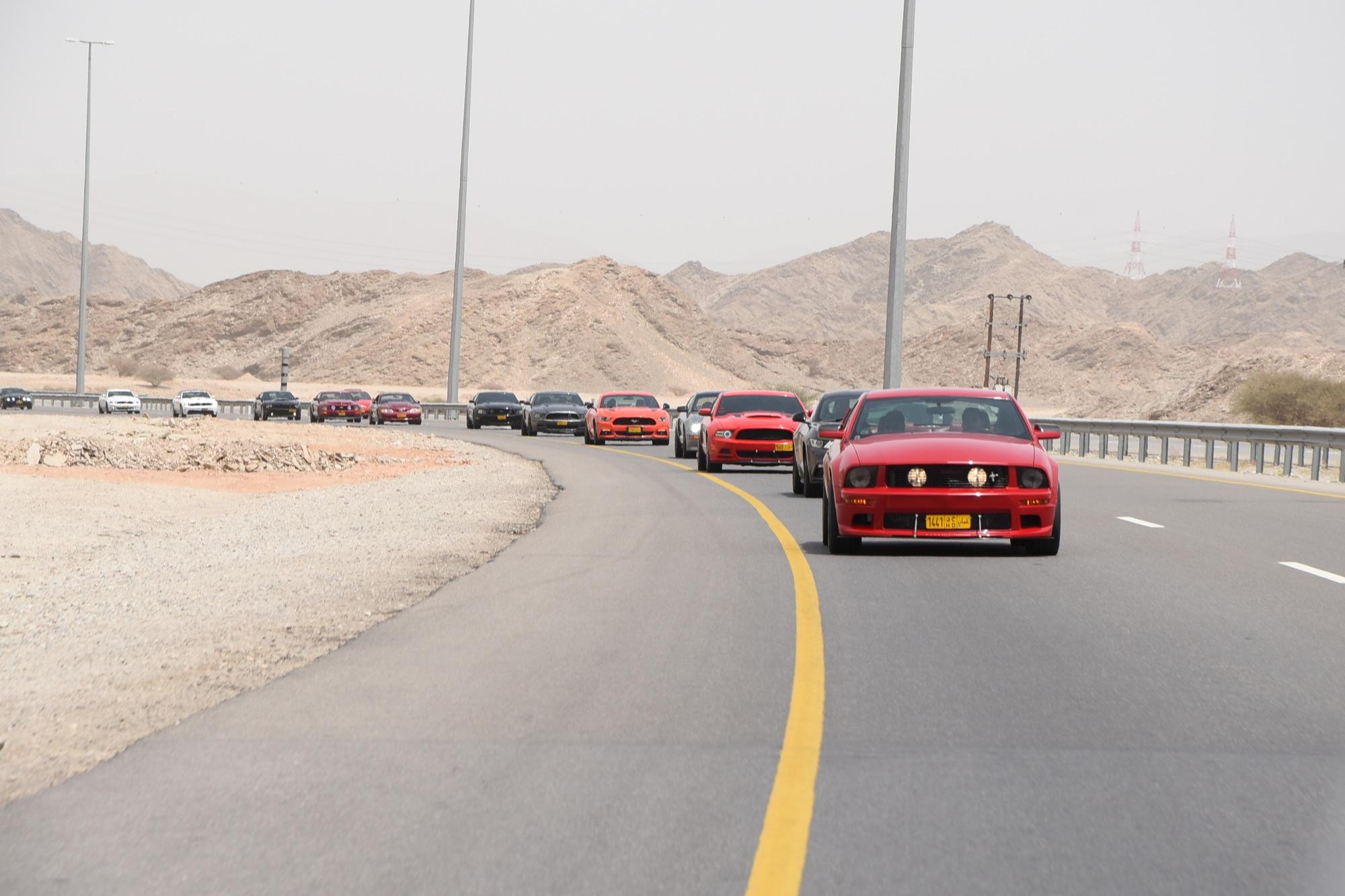 40 سيارة فورد مستانج تشارك في فعالية خاصة على الطريق