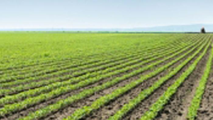 Sohar varsity gets OMR200,000 from UK to boost farm sector