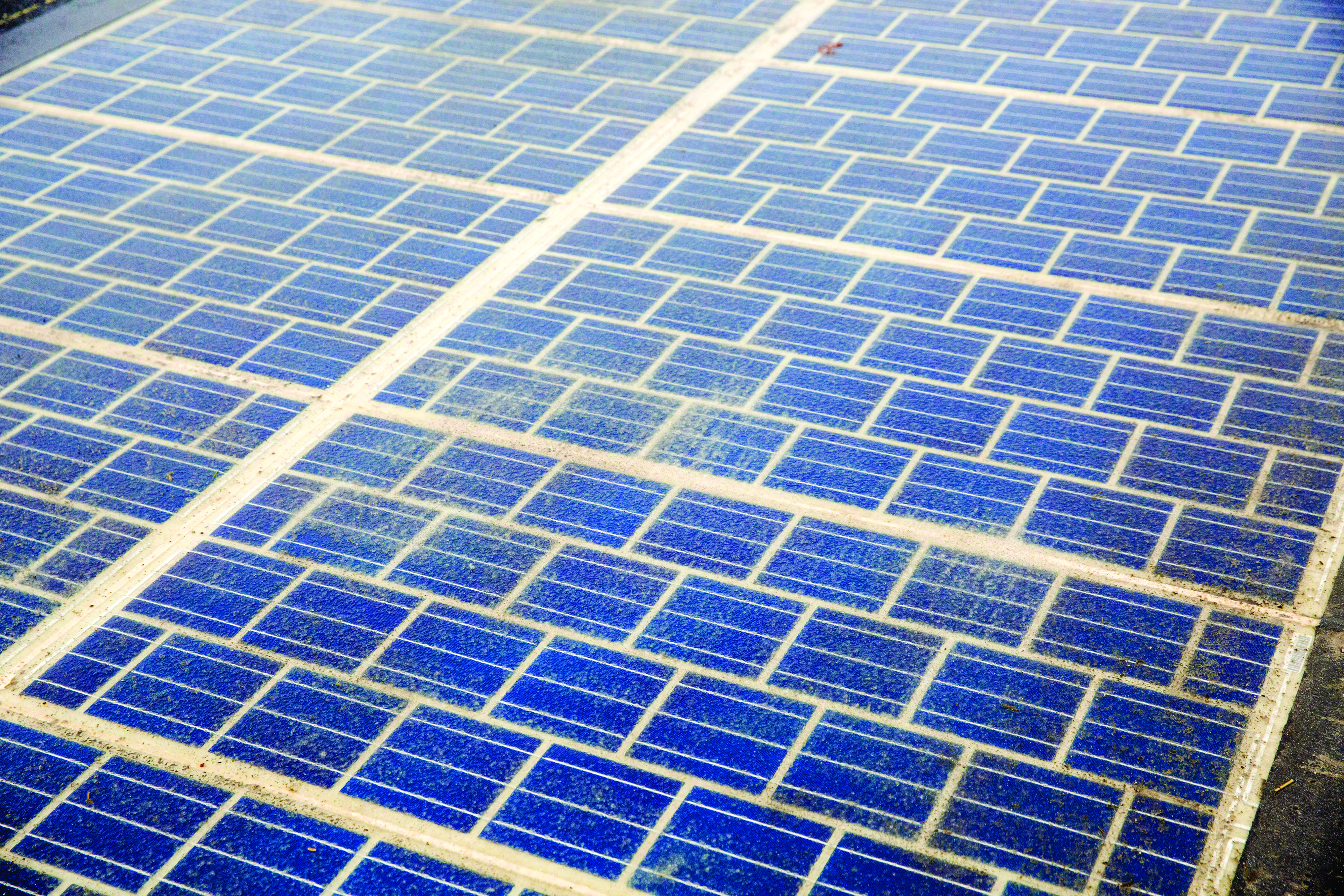 RAECO to tender for renewable energy projects by year end