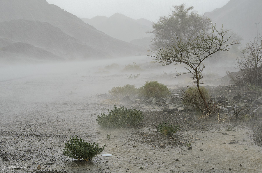 العمانية: أمطار رعدية متفرقة مصحوبة برياح هابطة نشطة مساء اليوم