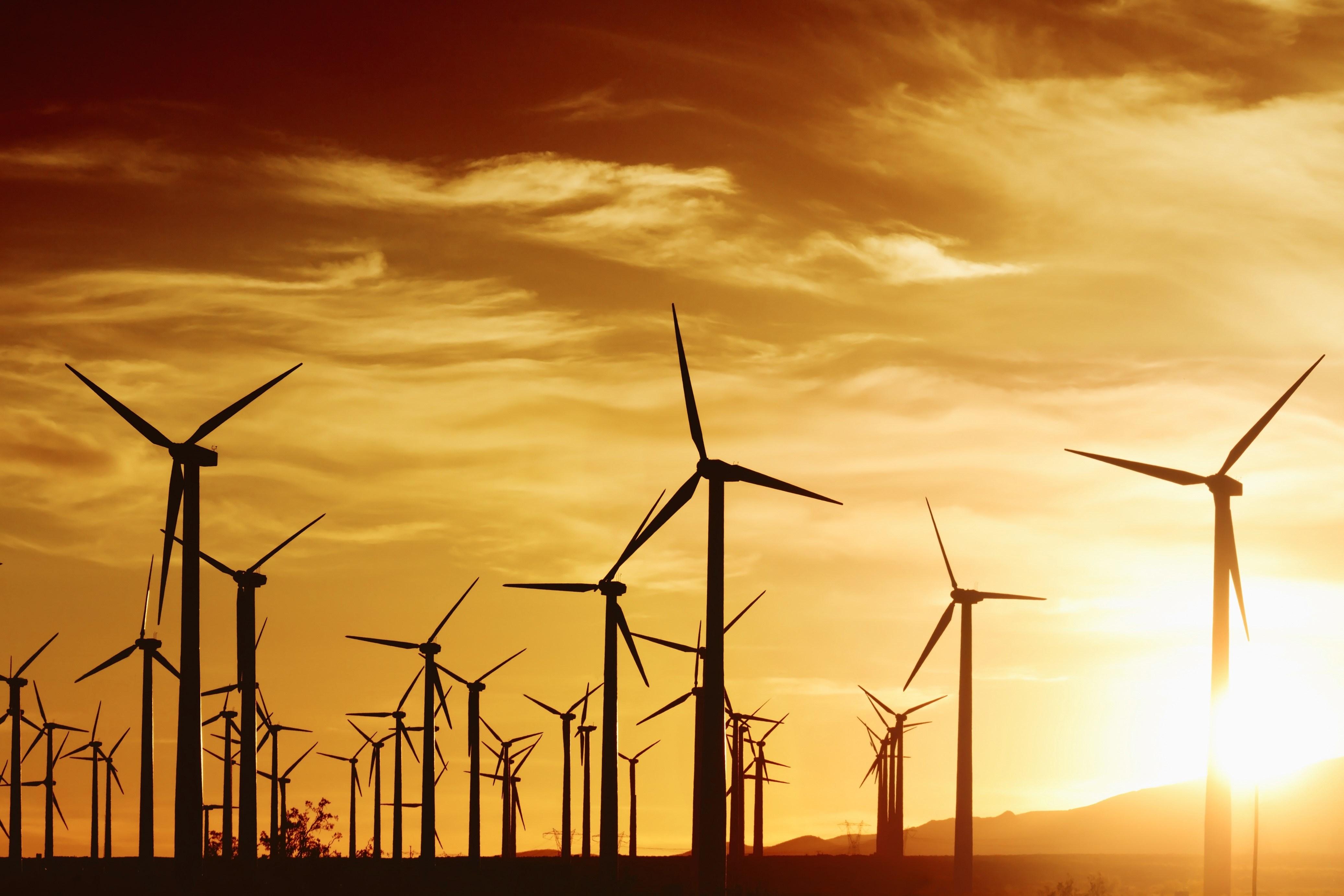 السلطنة تبني أكبر محطة لطاقة الرياح في الخليج العربي في ظفار