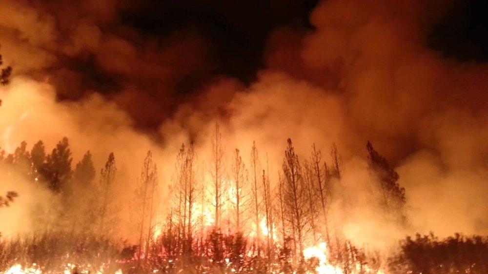 حرائق الغابات تكبد أمريكا أكثر من بليوني دولار