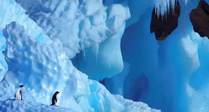 """ماذا عثر العلماء داخل كهوف """"أنتركتيكا"""" الدافئة؟"""