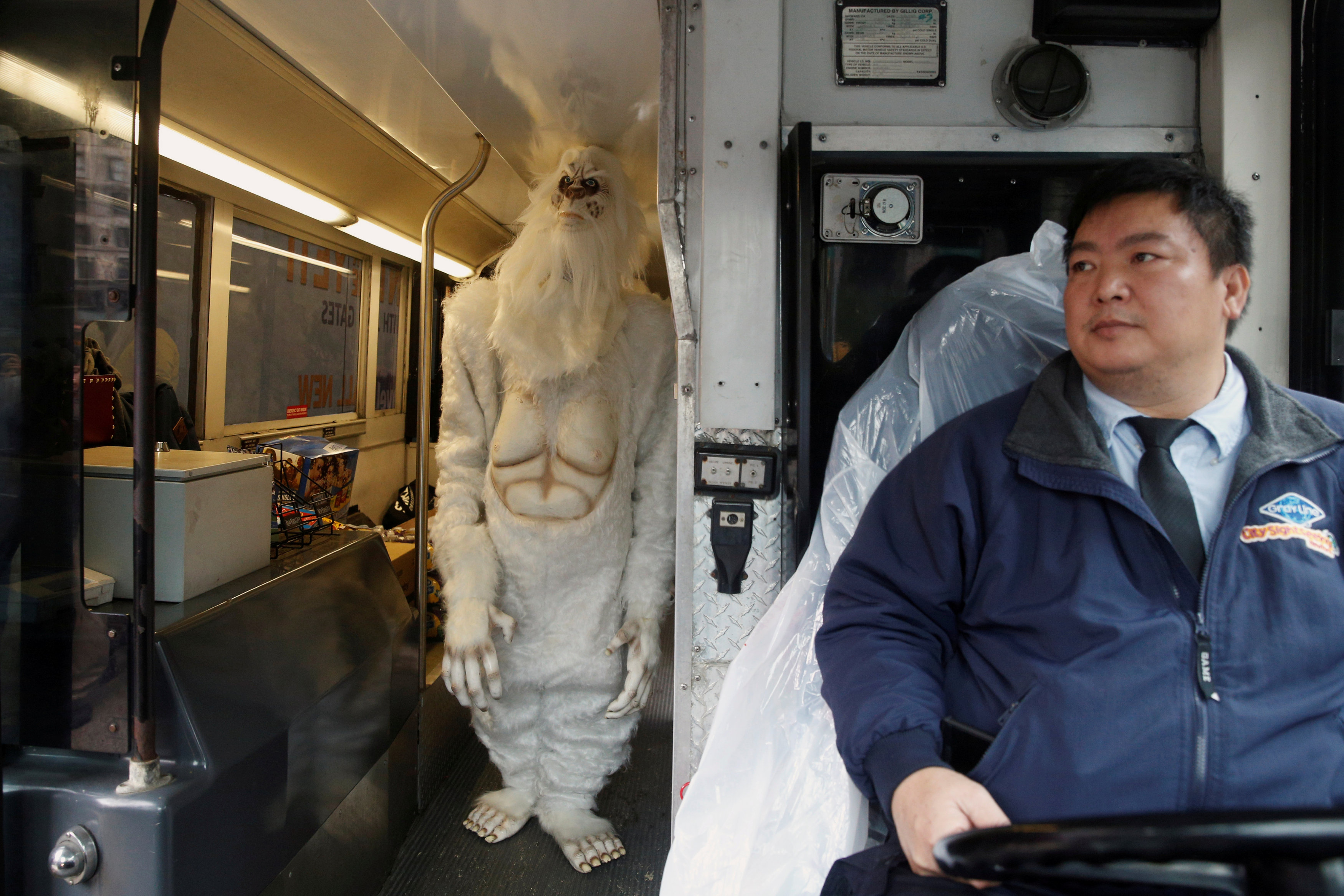 Yeti is in fact a bear, reveal scientists