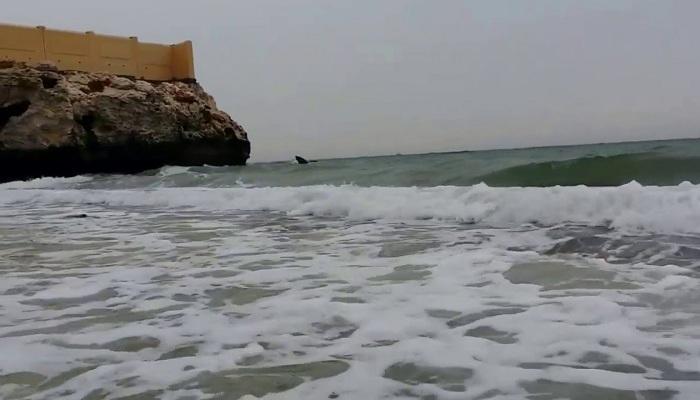 نفط عُمان تغلق شاطئ مرجان حتى إشعار آخر