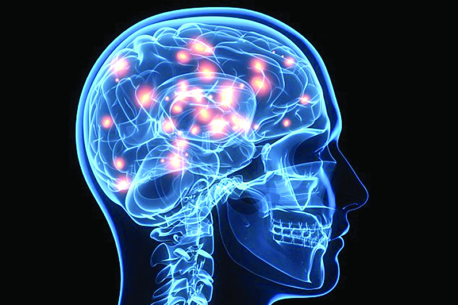 «الفصــام» نتيجــة ثانــــوية لتطور الدماغ المعقد