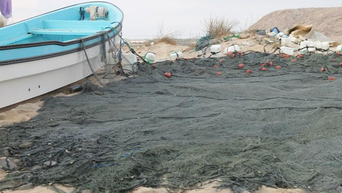 Omani authorities detain foreign vessels over illegal fishing