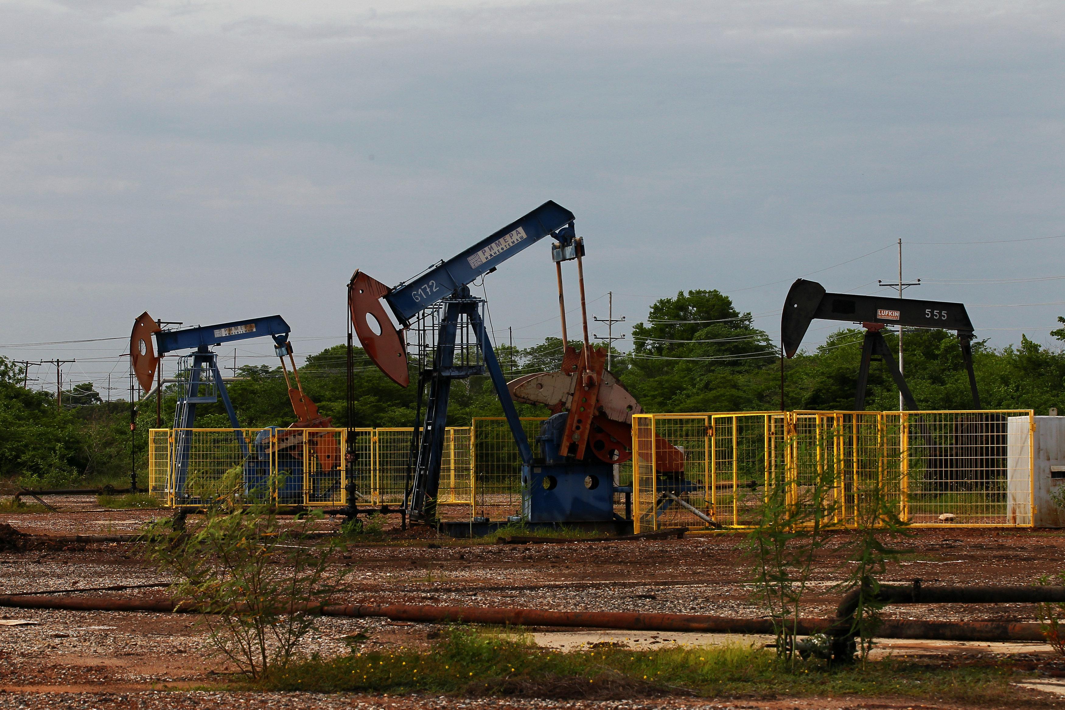 Oil demand seen steady in 2019