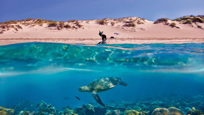 Your next extraordinary adventure at Western Australia's Ningaloo Reef