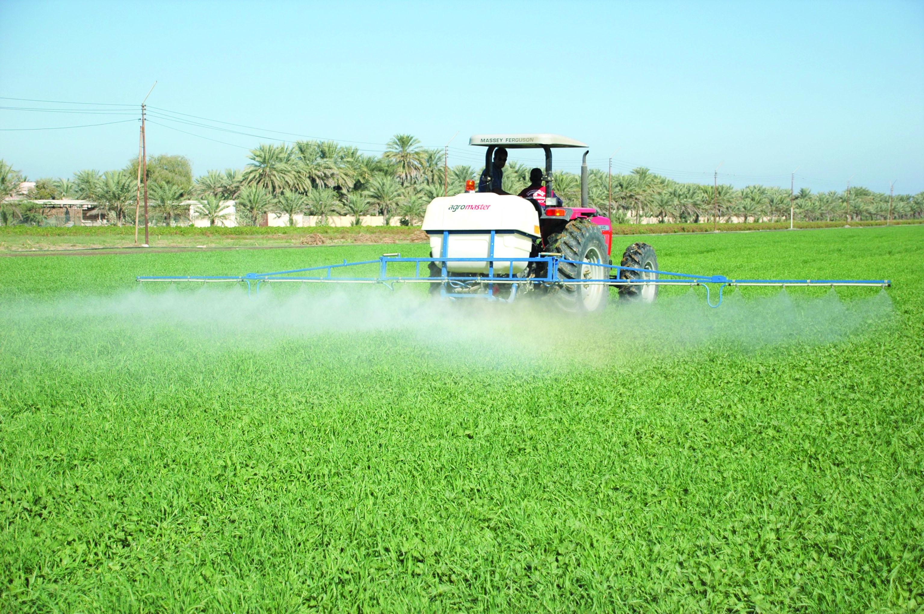 القطاع الزراعي.. خطى واثقة نحو الأمن الغذائي