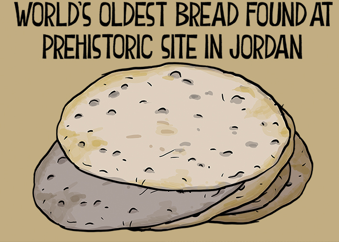 Oldest bread found at prehistoric site in Jordan