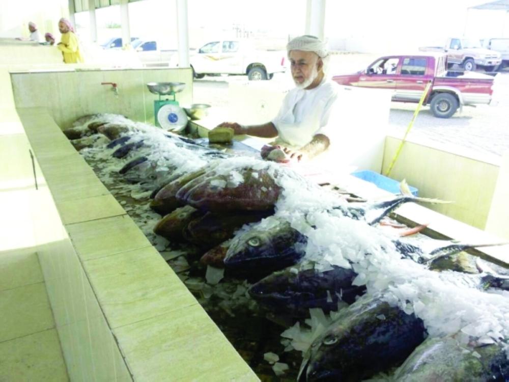 """""""الزراعة"""" تحدد موعد سريان حظر صيد أسماك الكنعد"""