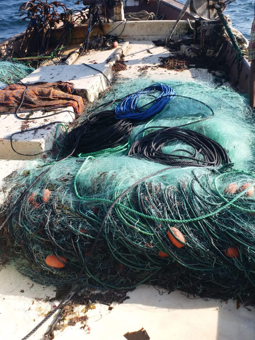 24 expats arrested for illegal fishing in Oman