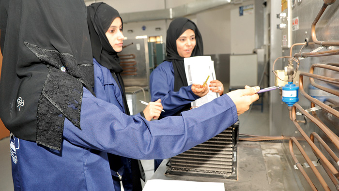 Mission accomplished?  70% of govt bodies are 100% Omani staffed