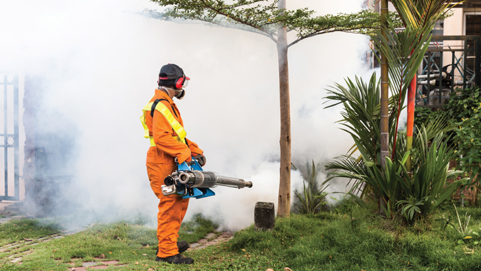 Dengue inspection drive to cover more areas in Oman