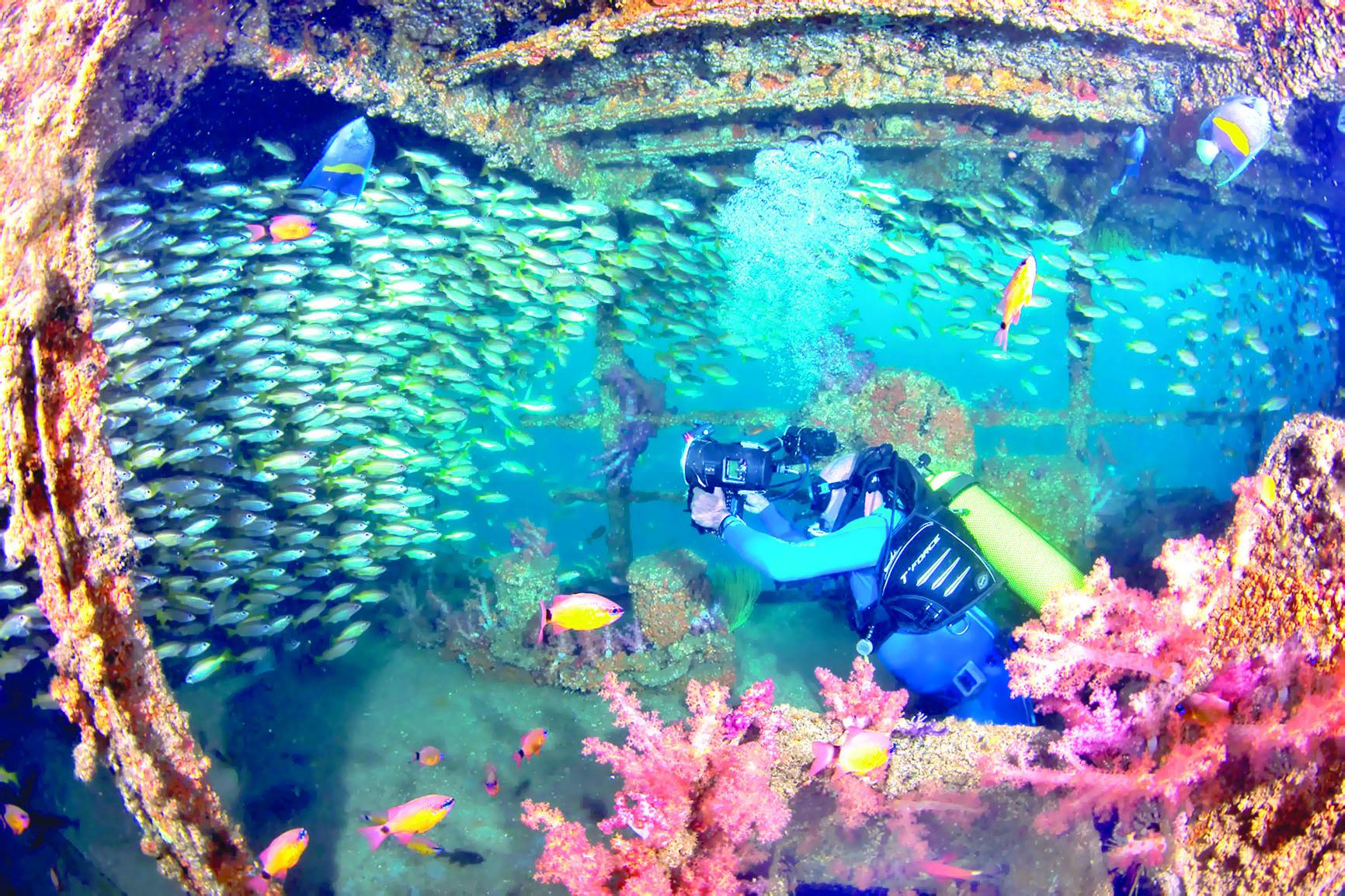 إنه وقت السياحة البحرية !.. تعرفوا على أفضل 5 مواقع للغوص في مسقط