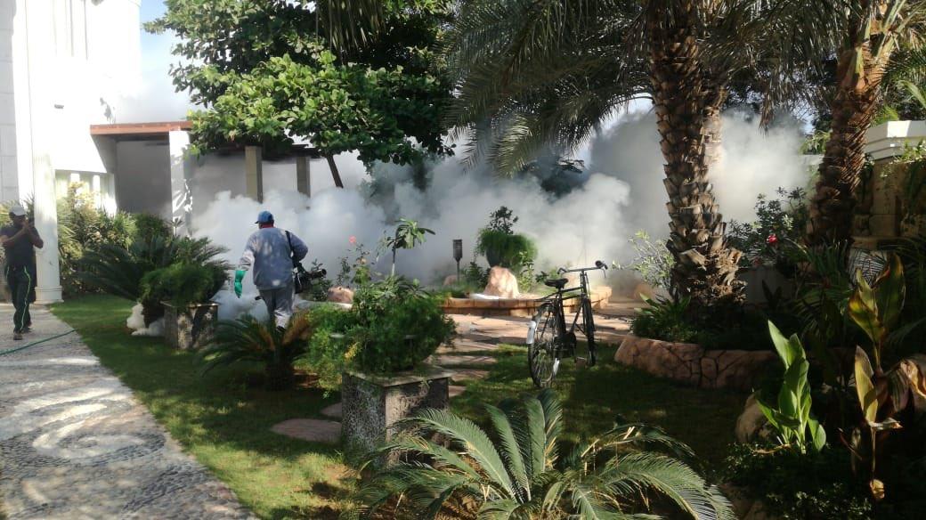 نجاح جهود الصحة والبلدية في إحتواء خطر الزاعجة المصرية