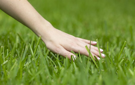 Back to basics: The importance of real grass