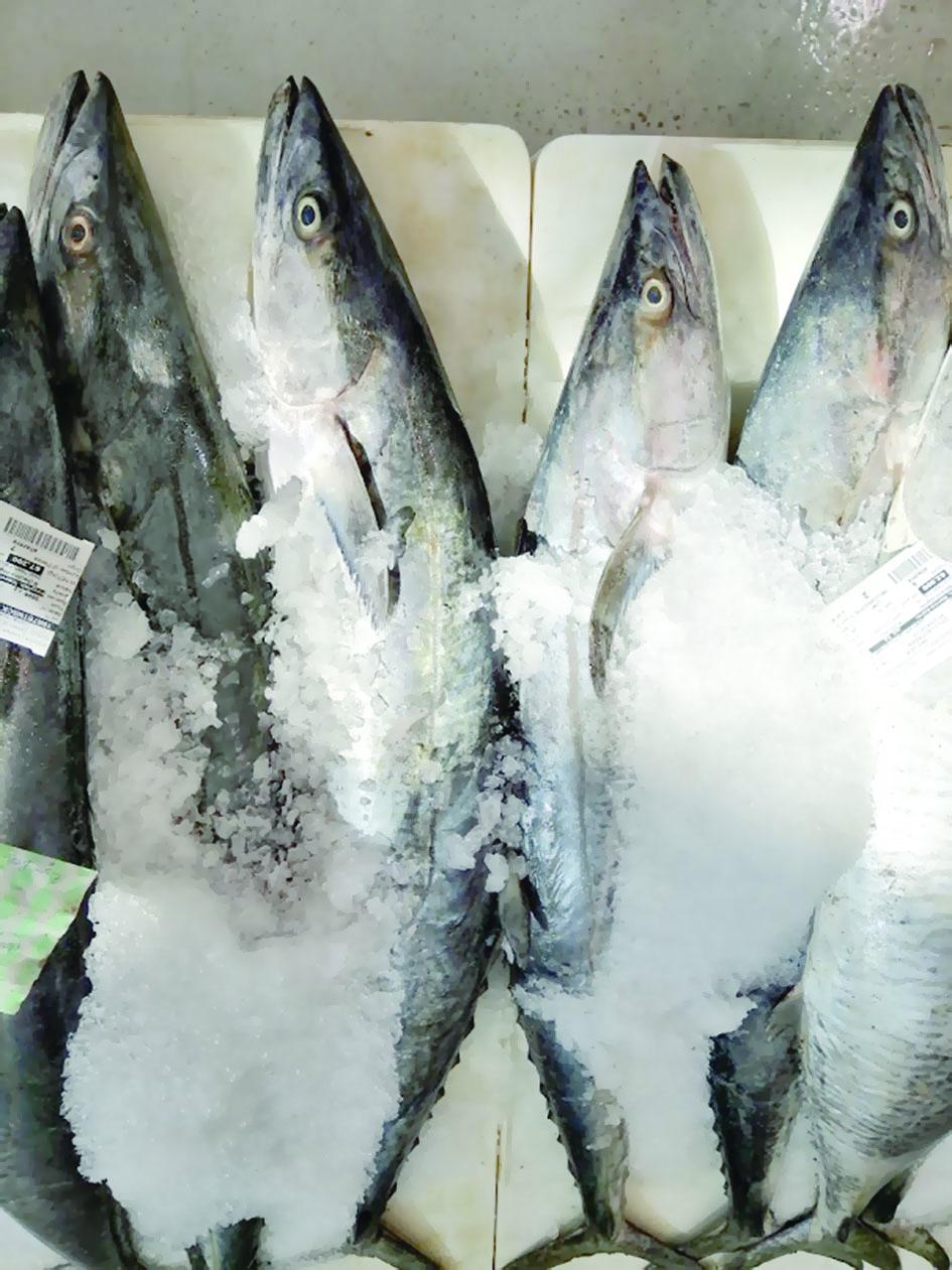 إنزال 30 طنا من الأسماك بسوق الجملة المركزي