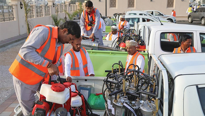 Anti-dengue drive in Oman curbs spread of vector mosquitoes