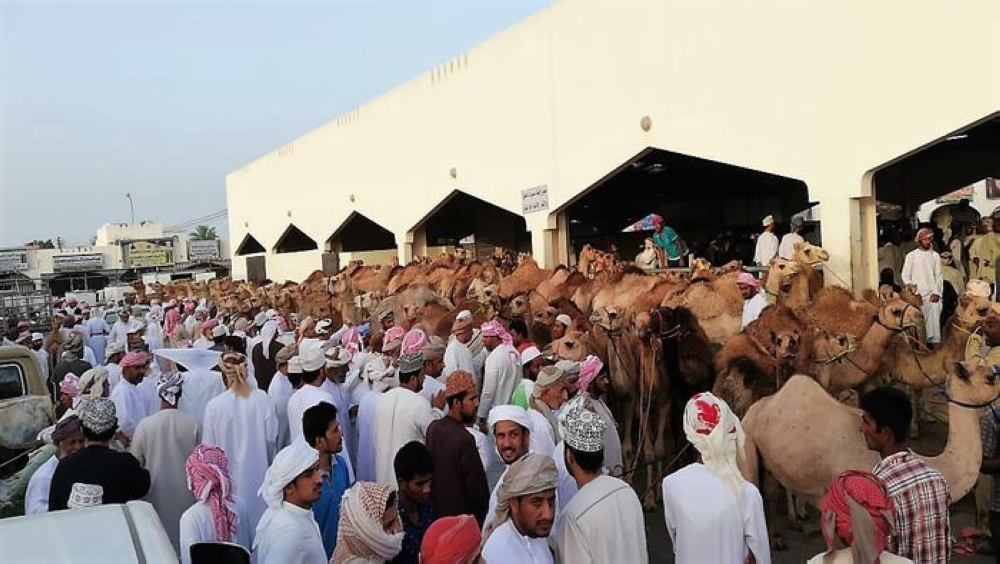 Sufficient supply of livestock ahead of Eid: Ministry