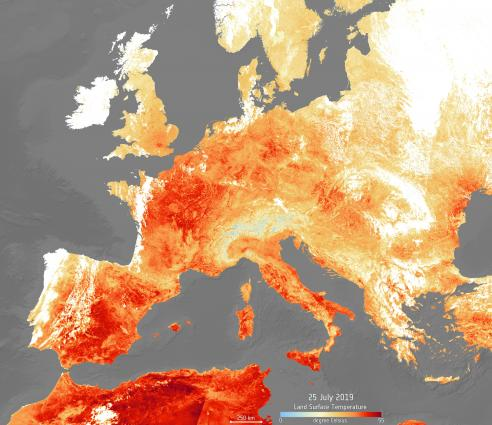 'July may have been hottest month in recorded history'